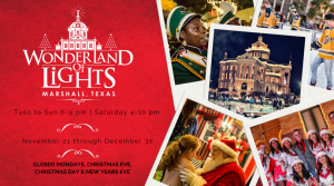 Wonderland of Lights Festival @ The City of Marshall, Texas