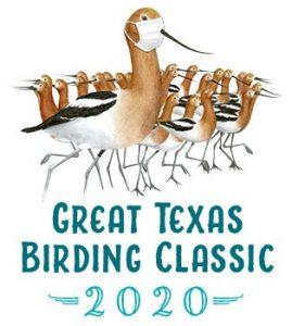 The Great Texas Birding Classic @ Texas
