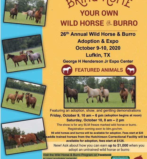 26th Annual Wild Horse & Burro Adoption & Expo