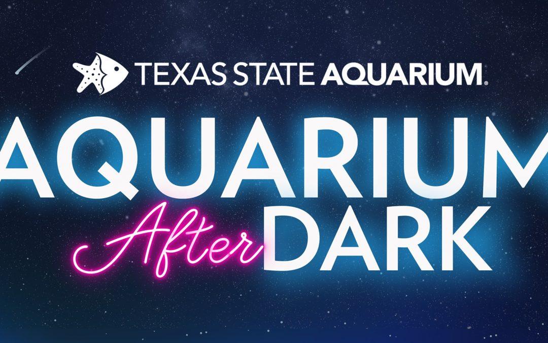 Aquarium After Dark